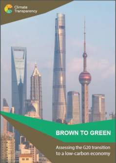 Brown to Green-Report