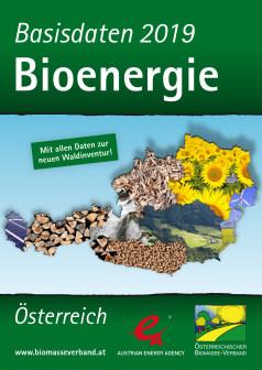 Basisdaten Bioenergie 2019
