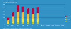 BAFA-Monatsstatistik Juli 2020