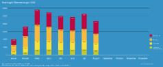 BAFA-Monatsstatistik August 2020
