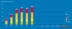 BAFA-Monatsstatistik Juni 2021