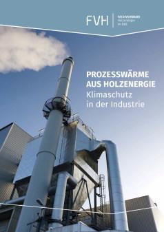 """Broschüre """"Prozesswärme aus Holzenergie"""""""