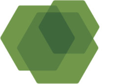 Forum Nachhaltige Holzenergie
