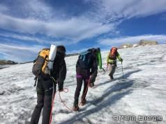 Pellet-Summit 2018