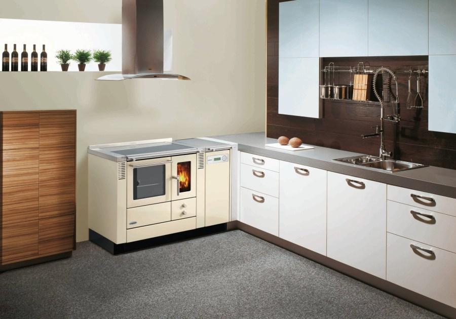 heizen und kochen mit holz liegen im trend pellets news. Black Bedroom Furniture Sets. Home Design Ideas
